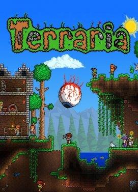 سی دی کی اورجینال Terraria