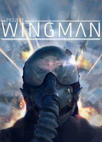 سی دی کی اورجینال Project Wingman